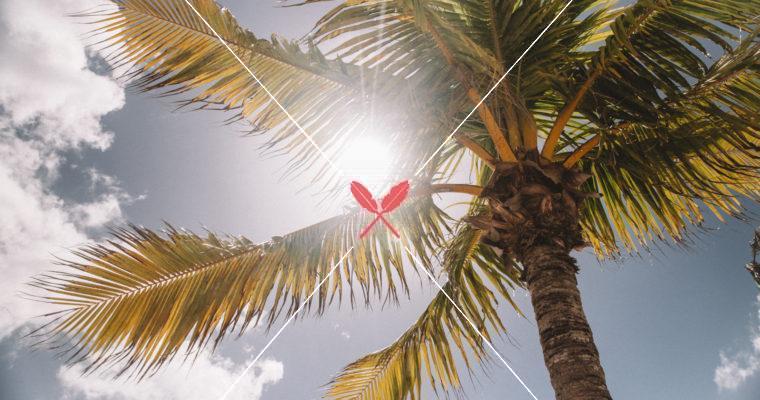 【中醫師的理想日常-七月號】是陰暑?還是陽暑?分清楚,才能解對暑!
