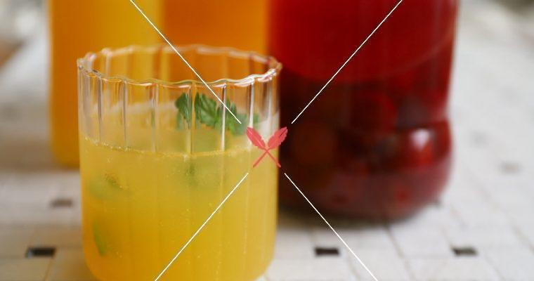 免費試閱: 進階鳳梨風味醋【康普茶醋與二次發酵氣泡醋】第一次做就上手!