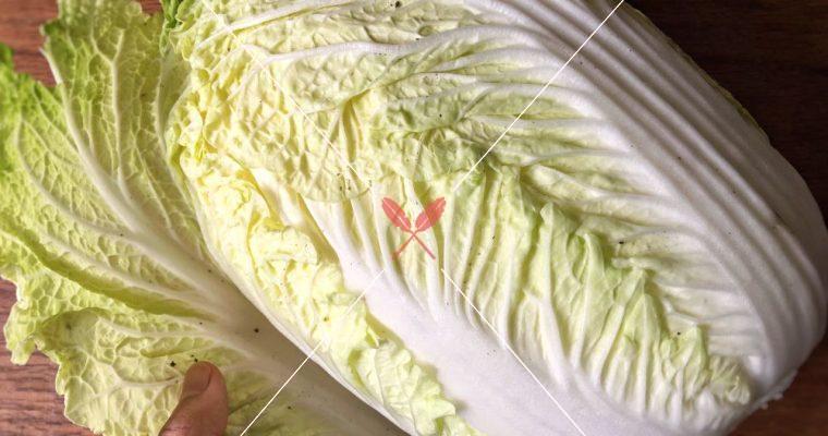 【深度台灣在地蔬果水產集】大白菜,養顏和瘦身就靠它!